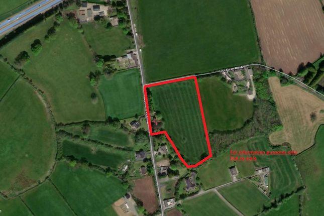 Farmhouse for sale in c. 4.5 Acres, 59 Castor Bay Road, Lurgan