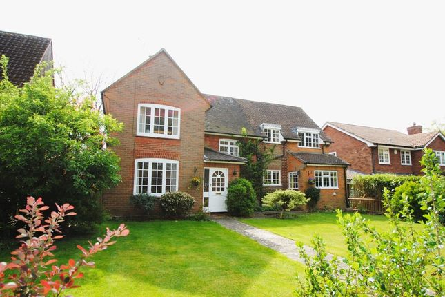 Thumbnail Detached house for sale in Glebe Lane, Hartley Wintney, Hook