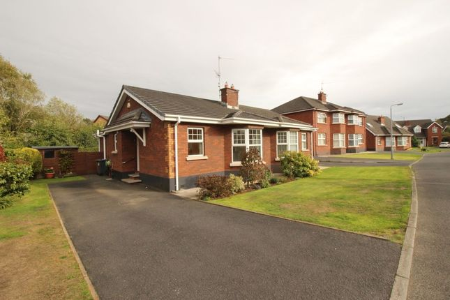Thumbnail Semi-detached house for sale in Greenwood Hill, Belfast