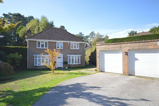 Thumbnail Detached house to rent in Tudor Close, Grayshott, Hindhead