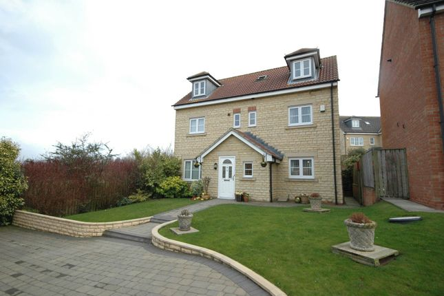 Thumbnail Detached house for sale in Cheviot View, Windy Nook, Gateshead