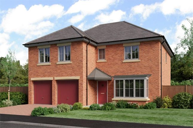 "Thumbnail Detached house for sale in ""The Jura"" at Low Lane, Acklam, Middlesbrough"
