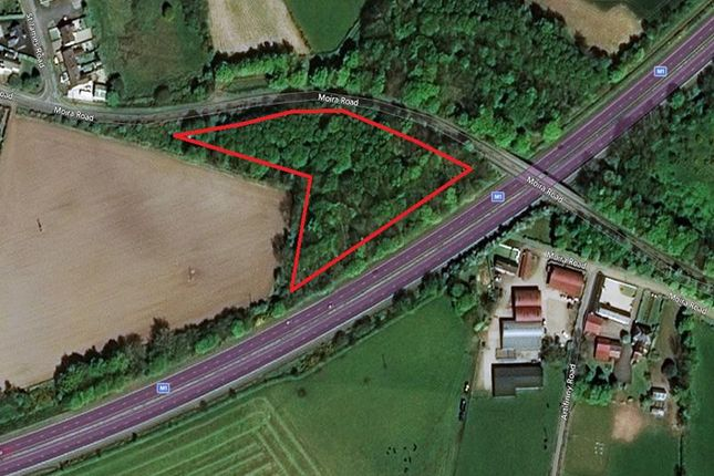 Thumbnail Land for sale in Tni Land At Moira Road/Beechfield Bridge, Hillsborough, County Down
