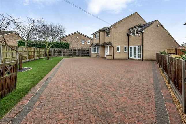 Thumbnail Detached house for sale in Rowan Crescent, Biggleswade, Bedfordshire