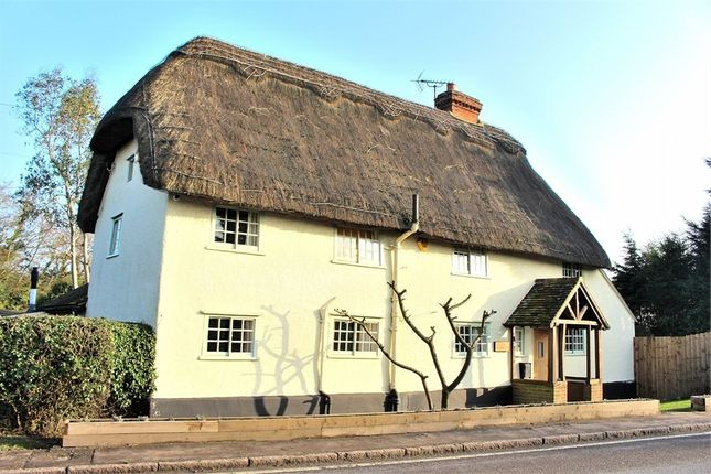 Thumbnail Detached house for sale in The Street, High Roding, Dunmow