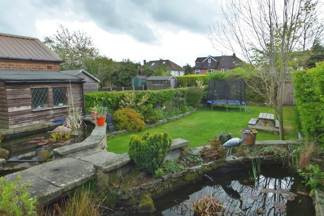 Garden of Henley Avenue, Norton, Sheffield S8