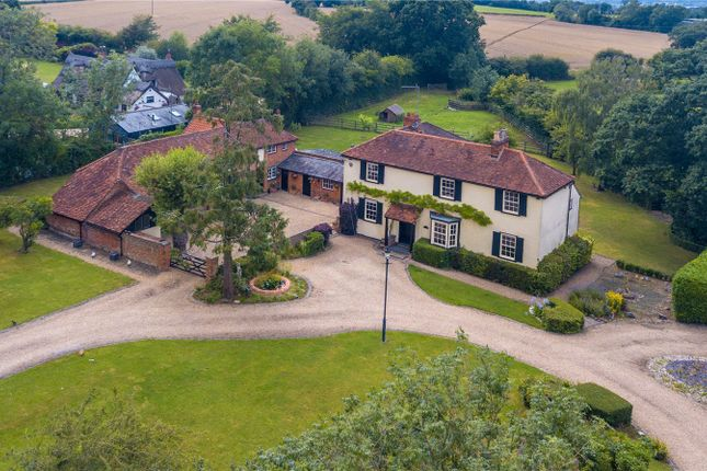 Thumbnail Detached house for sale in Common Road, Nazeing, Essex