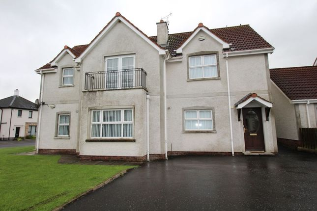 Thumbnail Flat to rent in Bashfordsland, Carrickfergus