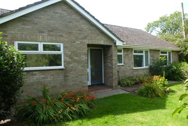 Thumbnail Bungalow to rent in Main Road, West Winch