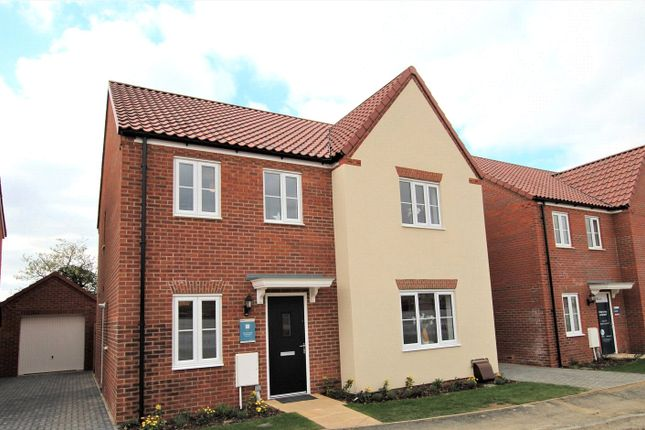 Thumbnail Detached house for sale in Saxon Fields, Blofield, Norfolk