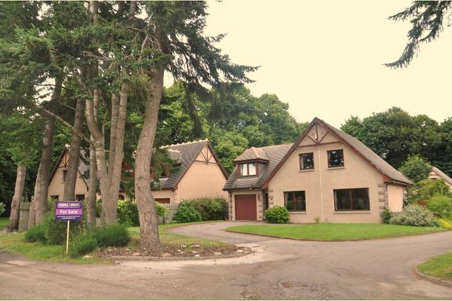Thumbnail Detached house for sale in The Beeches, Banchory