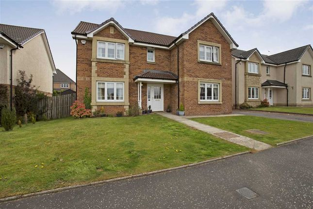 Thumbnail Detached house for sale in Callaghan Crescent, Jackton, Jackton