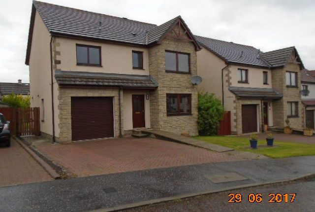 Thumbnail Detached house to rent in Young Avenue, Birkhill, Dundee