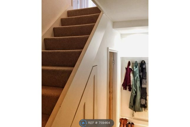 Stairs And Shared Storage Underneath