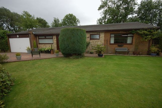 Thumbnail Detached bungalow for sale in Hawthorn Way, Darras Hall, Newcastle Upon Tyne