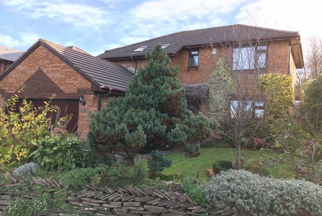 Thumbnail Detached house for sale in Victoria Park, Wadebridge