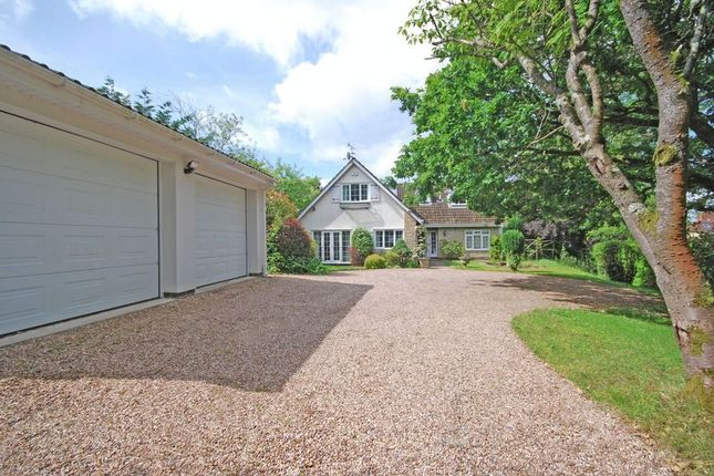 Thumbnail Detached house for sale in Outstanding Detached Property, Glasllwch Lane, Newport