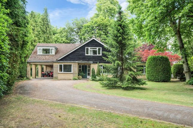 Thumbnail Detached house for sale in Shillingford, Wallingford