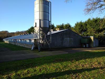 Thumbnail Warehouse to let in Berrys Pond Farm, Dunbridge Lane, Awbridge, Romsey