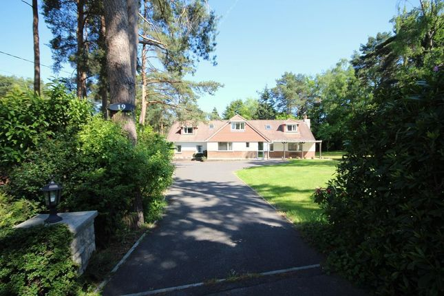 Thumbnail Detached house for sale in Ashley Drive North, Ringwood