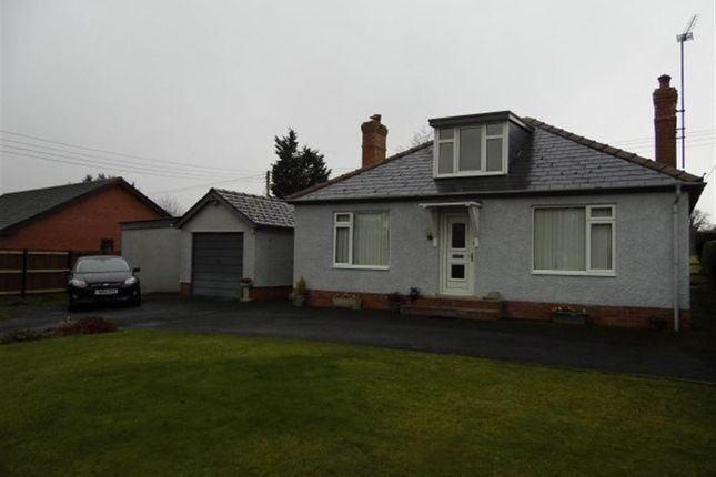 Thumbnail Bungalow to rent in Almeley Road, Eardisley, Herefordshire