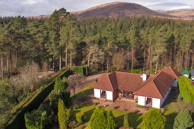 Thumbnail Bungalow for sale in Torlundy, Fort William