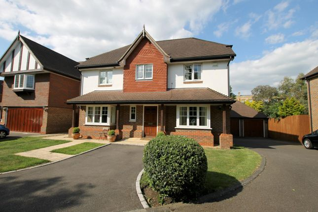Thumbnail Detached house to rent in Hurst Road, East Molesey, Surrey