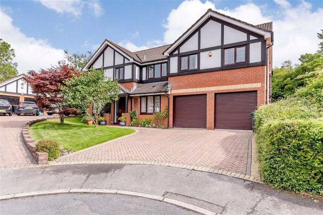 Thumbnail Detached house for sale in Tregarn Close, Langstone, Newport