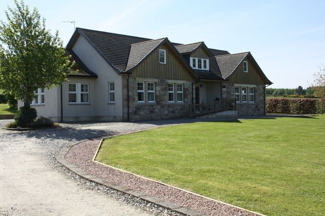 Thumbnail 4 bed detached bungalow for sale in Greenleonachs, Culbokie, Dingwall