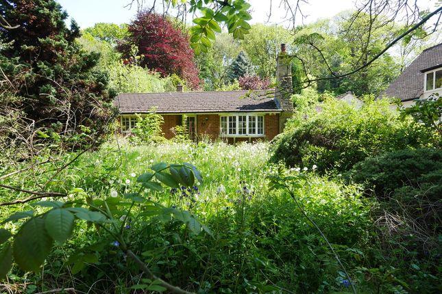 Thumbnail Detached bungalow for sale in Sefton Drive, Mapperley Park, Nottingham