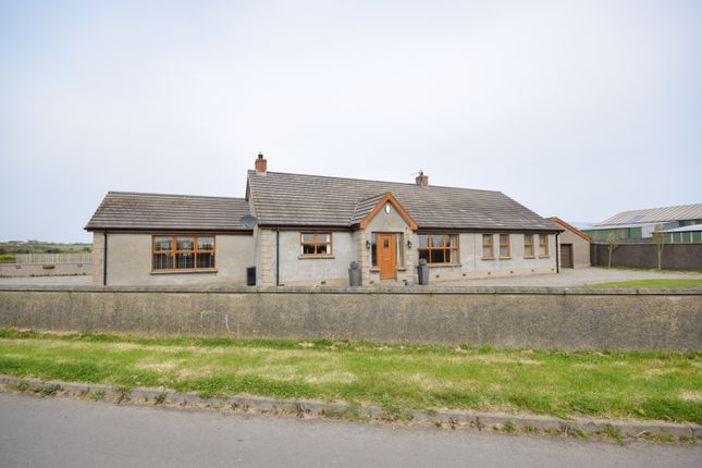Thumbnail Detached bungalow for sale in Bush Lodge, Bush Road, Ballyhalbert, Newtownards
