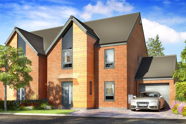 Thumbnail Detached house for sale in Wilmot Street, Heanor, Derbyshire