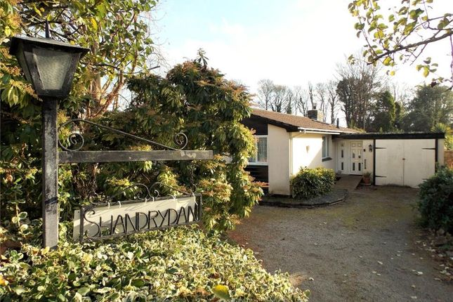 Thumbnail Detached bungalow for sale in Clarence Road, St. Austell, Cornwall