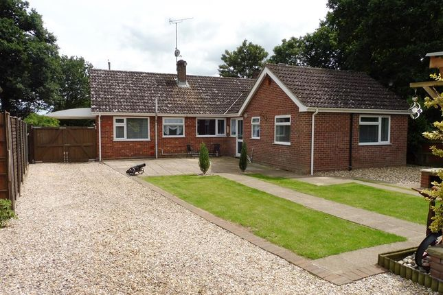 Thumbnail Detached bungalow for sale in Cromer Road, Hainford, Norwich
