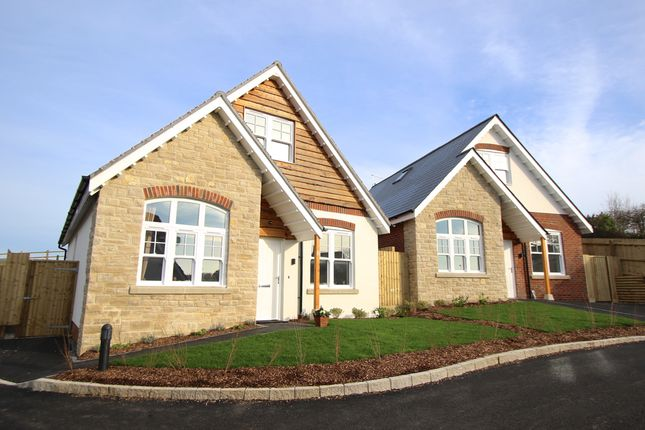 Thumbnail Detached house for sale in The Brook, Prospect Way, Swanage