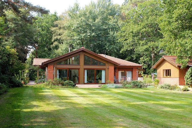 Thumbnail Detached bungalow for sale in Ameysford Road, Ferndown