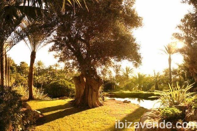 Thumbnail Villa for sale in Cala Mastella, Santa Eularia Des Riu, Baleares