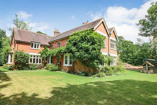 Thumbnail Detached house for sale in Crawley Down Road, Felbridge, West Sussex