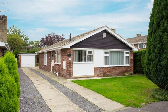 Thumbnail Detached bungalow for sale in Old Orchard, Haxby, York