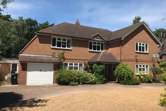 Thumbnail Detached house to rent in Pyrford Woods Road, Woking, Surrey