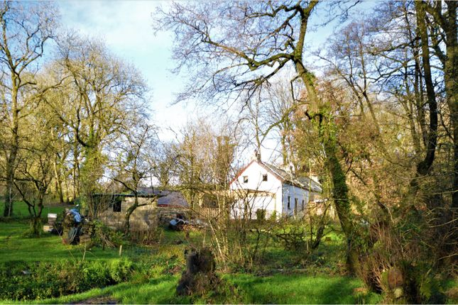 Thumbnail Cottage for sale in Henllan Amgoed, Whitland