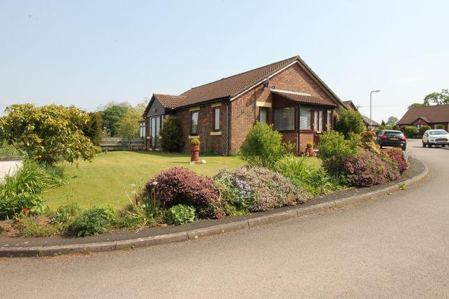 Thumbnail Detached bungalow for sale in Dale View, Laversdale, Irthington, Carlisle