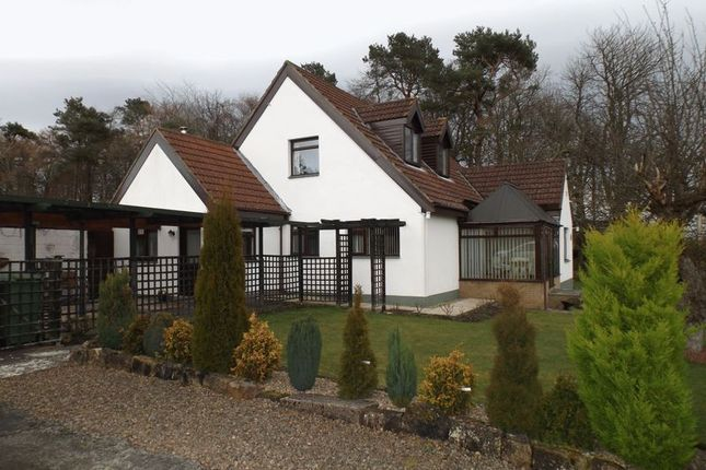 Thumbnail Bungalow for sale in The Avenue, Swarland, Morpeth