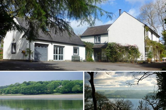 Thumbnail Detached house for sale in Rhos, Haverfordwest