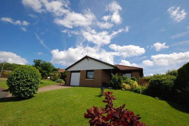 Thumbnail Detached bungalow for sale in Windmill Hill Close, Ellington, Morpeth
