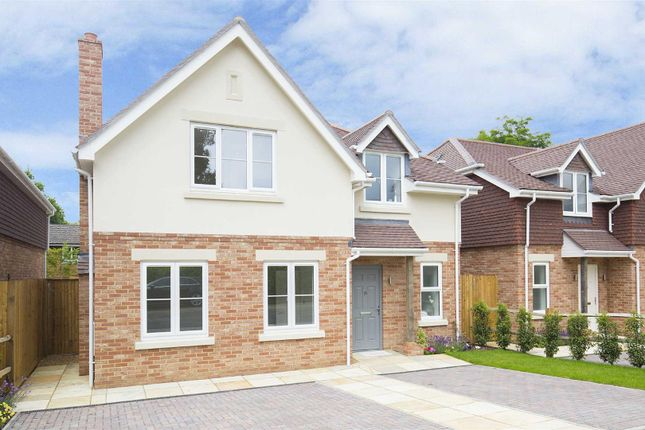 Thumbnail Detached house for sale in 6 Park Drive, Bramley, Guildford