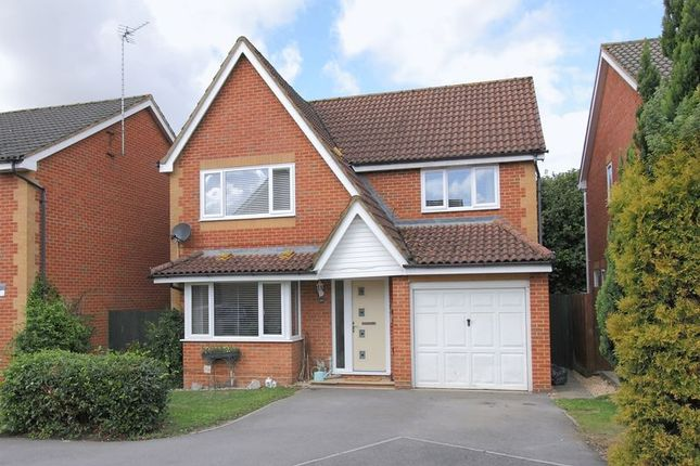 Thumbnail Detached house for sale in Flint Close, Andover