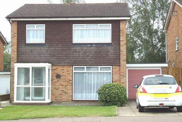 Thumbnail Detached house to rent in Mill Road, Colchester, Essex