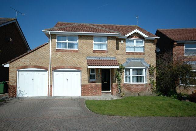 Thumbnail Detached house for sale in Horton Drive, Cramlington