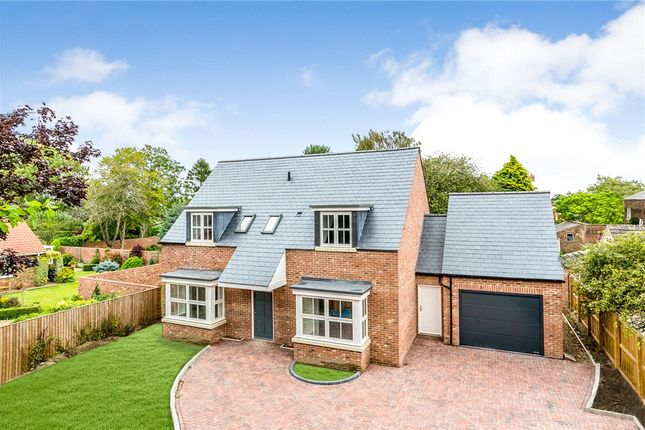 Thumbnail Detached house for sale in Springfield Lane, Tockwith, York